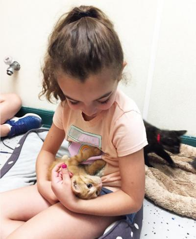 Addison Simmons, 8, holding Rex the kitten
