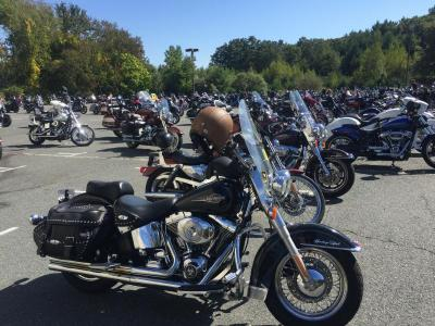 A parking lot full of Harleys and other motorcycles.