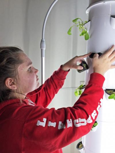 Eighth grader Kenzie Almeida transplants new seedlings into a hydroponic tower. Photo by: Kate Robinson