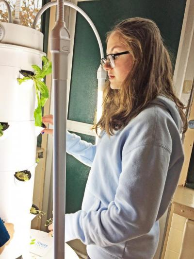 Abby Maxfield, a seventh grade middle school student, working on a hydroponic tower. Photo by: Kate Robinson