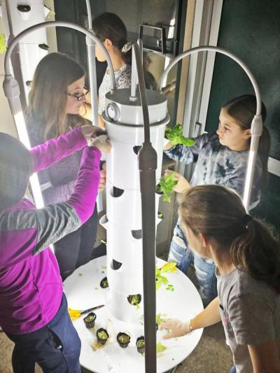 The club transplants seedlings into a tower. Photo courtesy: Dartmouth Middle School/Twitter