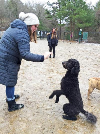 Dartmouth, MA news - Danielle goes in for a high five after Rizzo shows off his sitting abilities