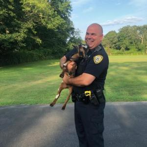 Dartmouth police officer Steve Canario with Marshmallow the goat after his adventure. Photo courtesy: Dartmouth Police Department