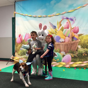Dartmouth Week - Dartmouth, MA news - Brady and Kathryn Laviolette and their dog Shadow take a photo with the Easter Bunny at last year's Humane Society Easter Extravaganza. Photo: Kate Robinson