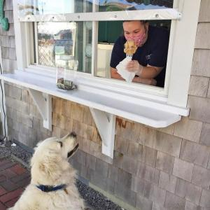 Dartmouth Week - Dartmouth, MA news - Ashley Reyes hands out ice cream as the dog waits patiently for its turn. Photo by: Kate Robinson